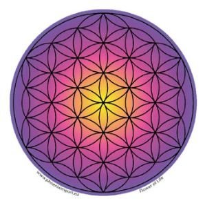 Sticker Flower of Life multicolor